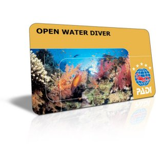 PADI Open Water Diver (inkl. Unterlagen, Brevet und AFTER WORK DIVING 10er Karte)